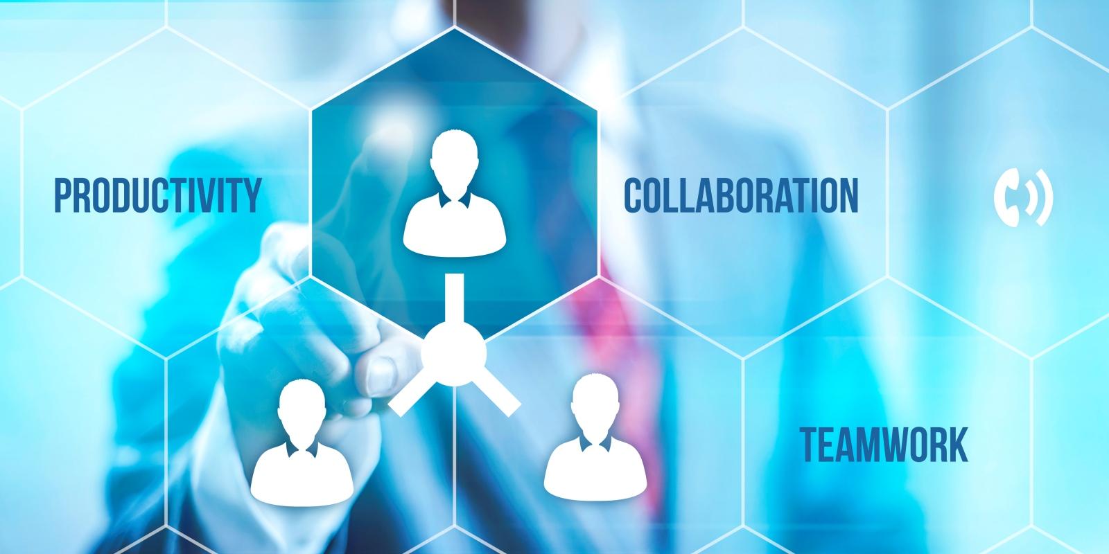 realizzazione portali web collaboration