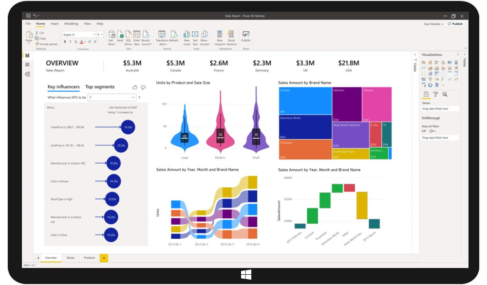 MS Power BI Business Intelligence